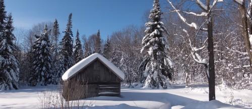 Une grange solitaire dans les Laurentides