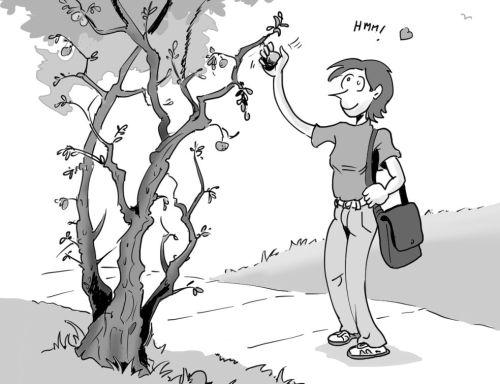 La savante folle cueille au passage une pomme d'un petit pommier tordu.