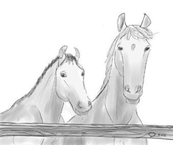 Deux chevaux dessinés de mémoire, Muskoka, nord Ontario