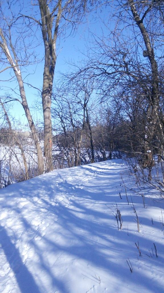 Un chemin de neige, en hiver...